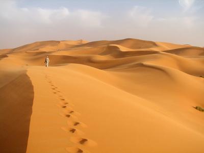 砂漠足跡.jpg