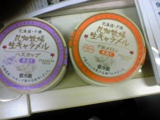 090622namakyarameru.JPG