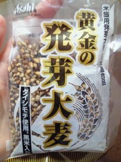 100608oomugi2.jpg