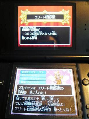 P1020402-0.25.JPG