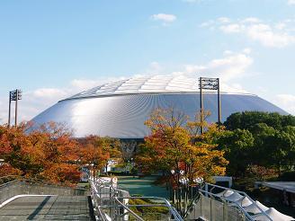 autumn@seibudome.JPG