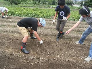 種植え田中.JPG