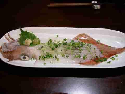 yobukoika1.jpg